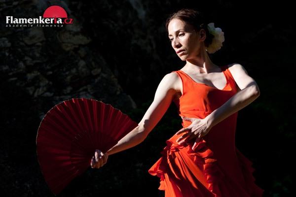 flamenco4