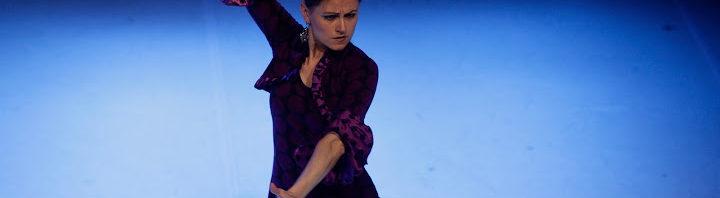 Flamenco de colores IX