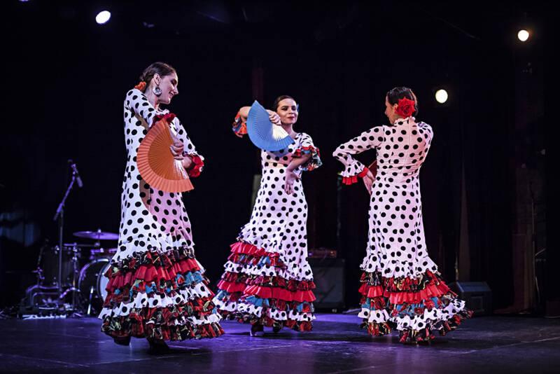 Flamenko vnaší metropoli