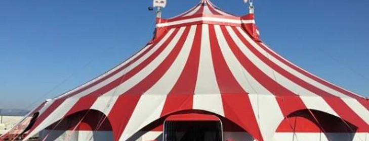 Cirkusové umění teoreticky
