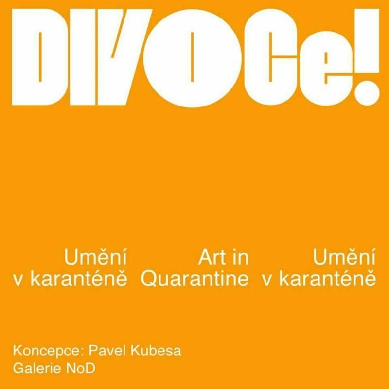 """V NODu tentokrát """"DIVOCe!"""""""