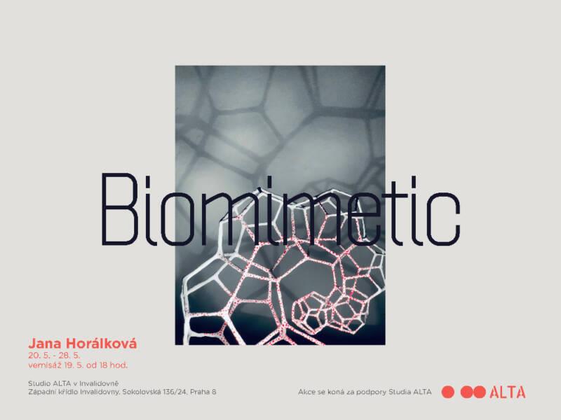 Biomimetic« Jany Horálkové