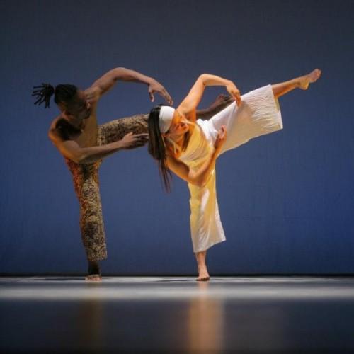 Lektor tance